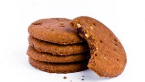 biscuit protéiné saveur chocolat